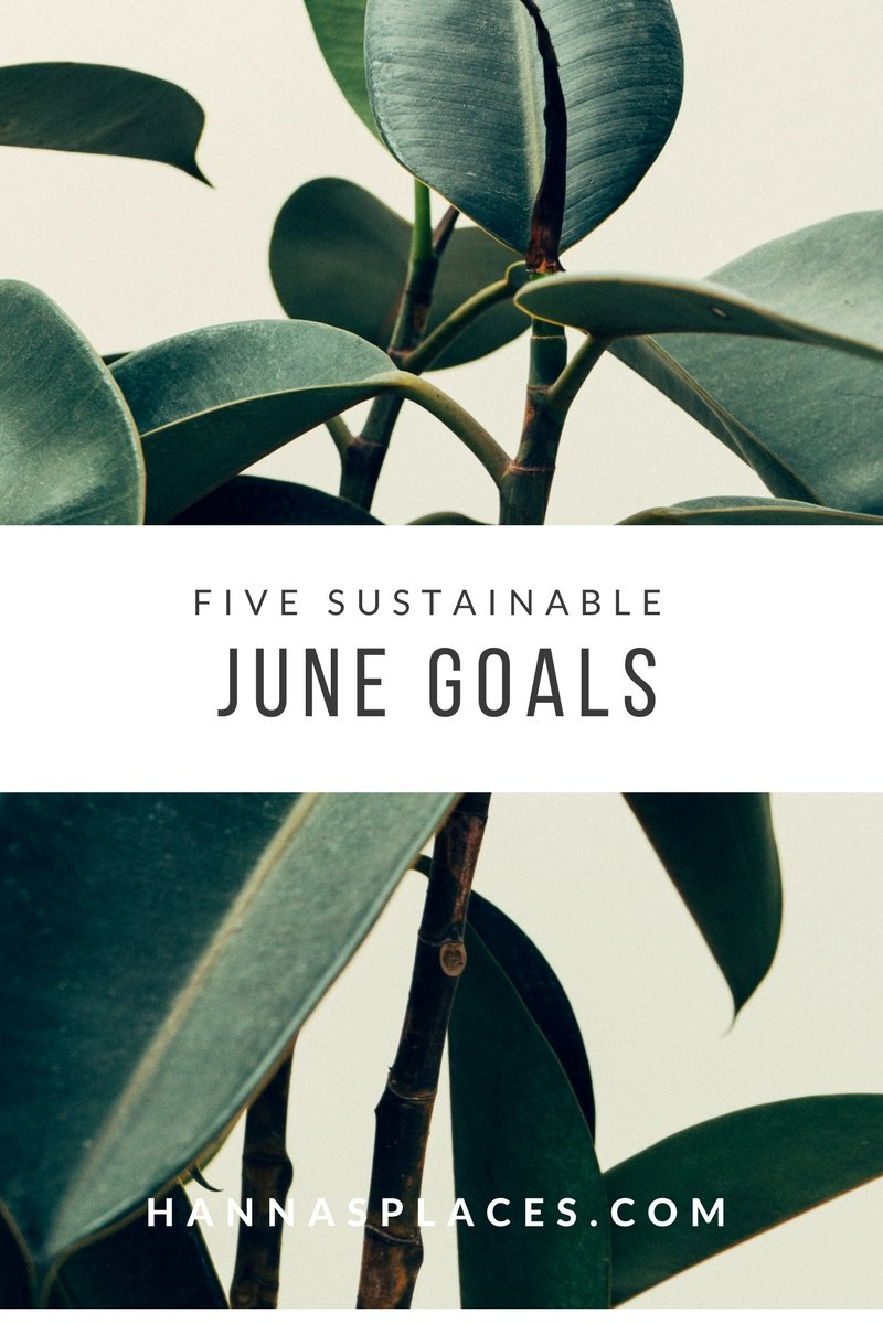 5 sustainable june goals