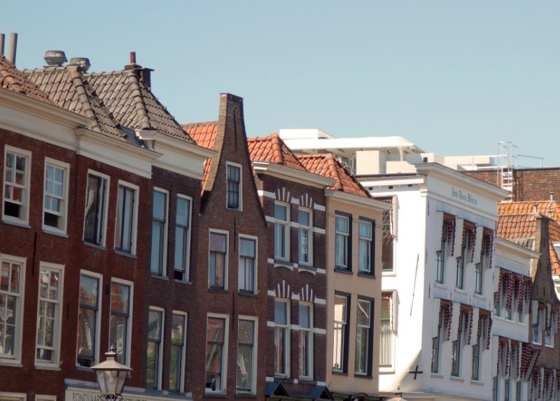 How to spend a slow, sustainable weekend in Leiden